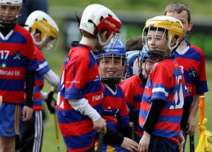 Hurling News and Fixtures