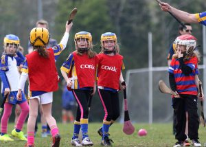 Hurling Camogie News 17th August 2016