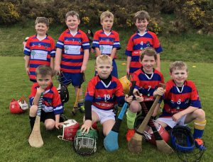 U8 And U12 Brid Og Hurlers Display Top-Level Skills In Challenges And League