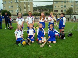 Victorious Outing At St Paul's For U10 Camogs